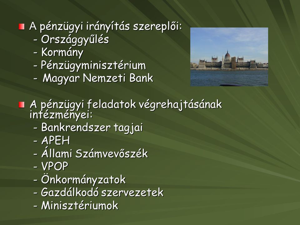 A pénzügyi irányítás szereplői: