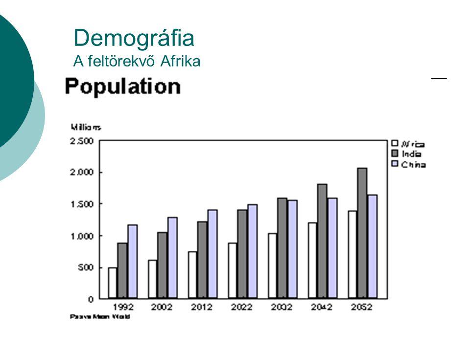 Demográfia A feltörekvő Afrika