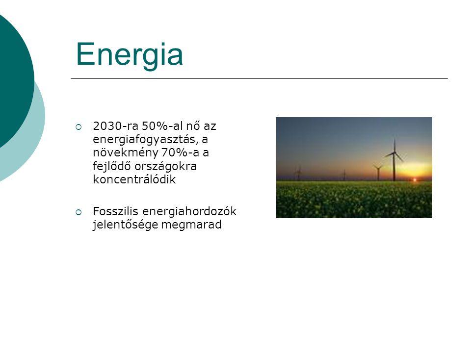 Energia 2030-ra 50%-al nő az energiafogyasztás, a növekmény 70%-a a fejlődő országokra koncentrálódik.