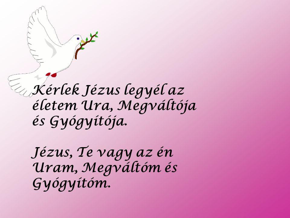 Kérlek Jézus legyél az életem Ura, Megváltója és Gyógyítója.
