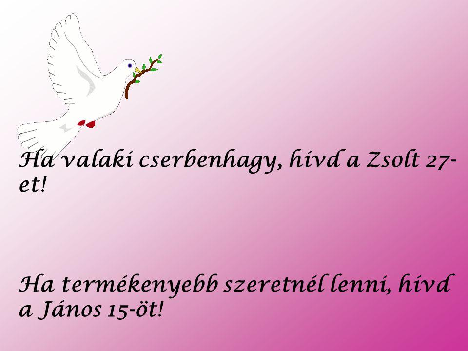 Ha valaki cserbenhagy, hívd a Zsolt 27-et!