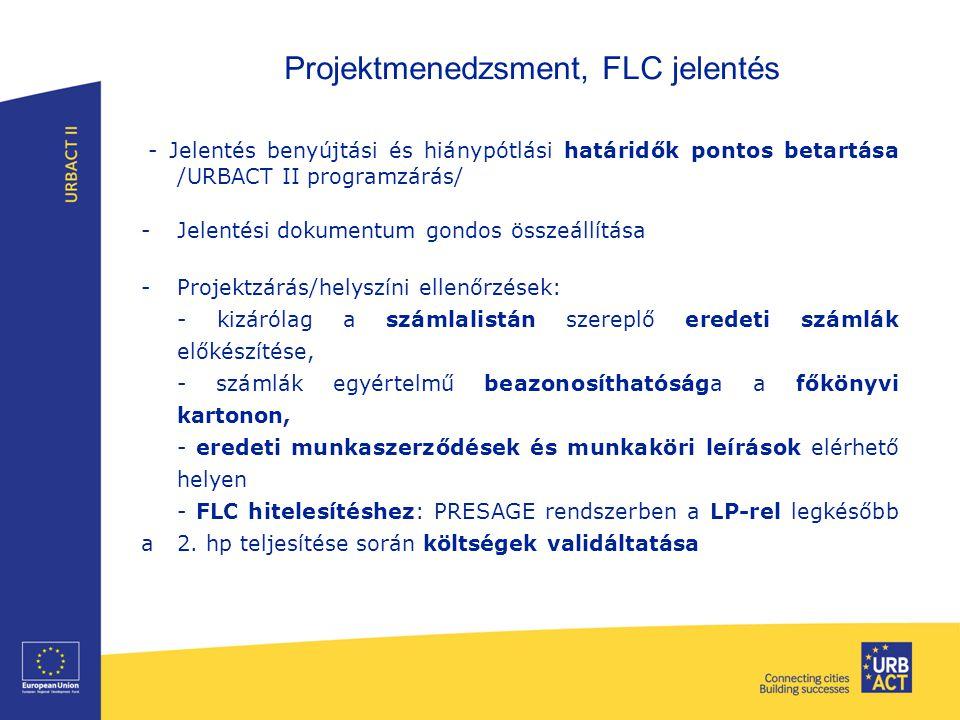 Projektmenedzsment, FLC jelentés