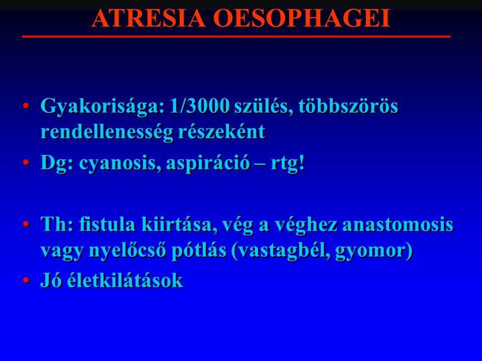 ATRESIA OESOPHAGEI Gyakorisága: 1/3000 szülés, többszörös rendellenesség részeként. Dg: cyanosis, aspiráció – rtg!