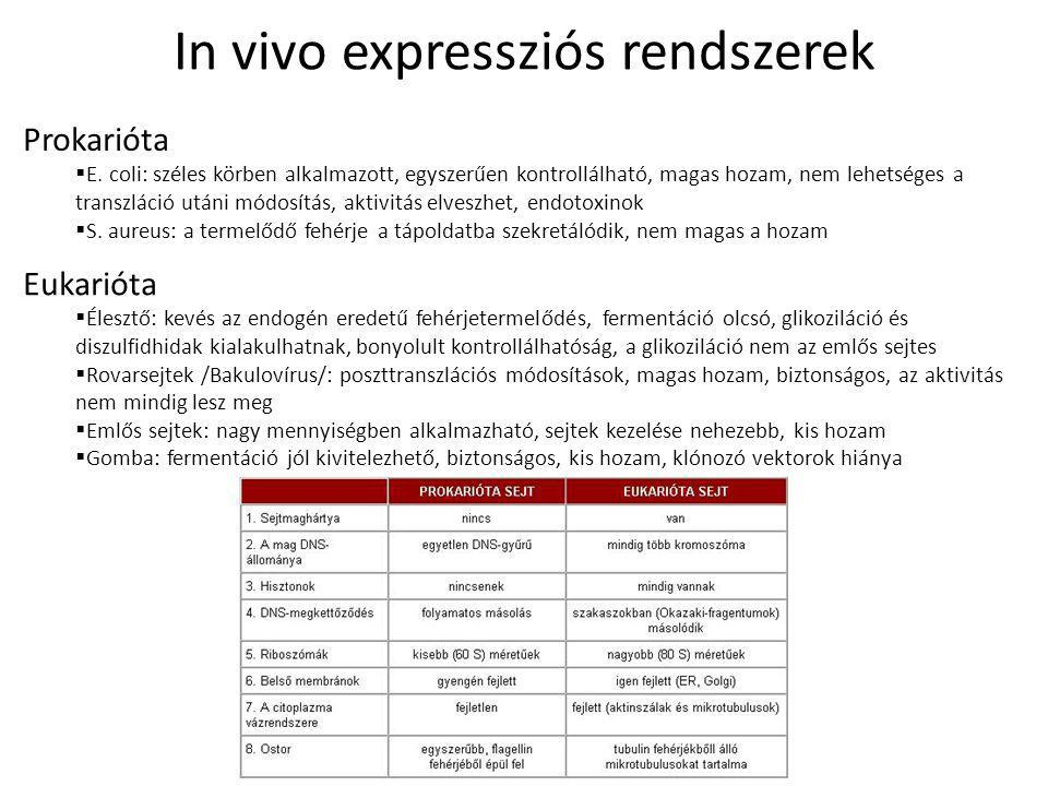 In vivo expressziós rendszerek
