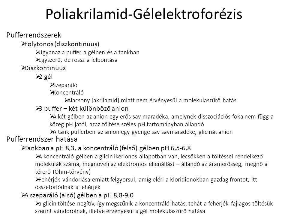 Poliakrilamid-Gélelektroforézis