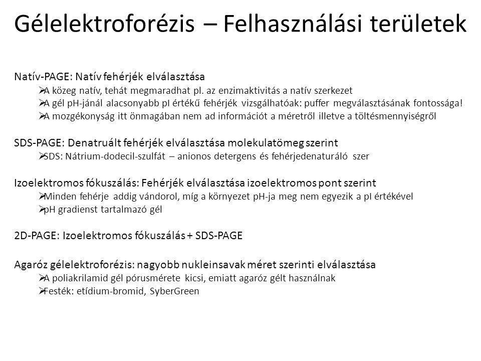 Gélelektroforézis – Felhasználási területek
