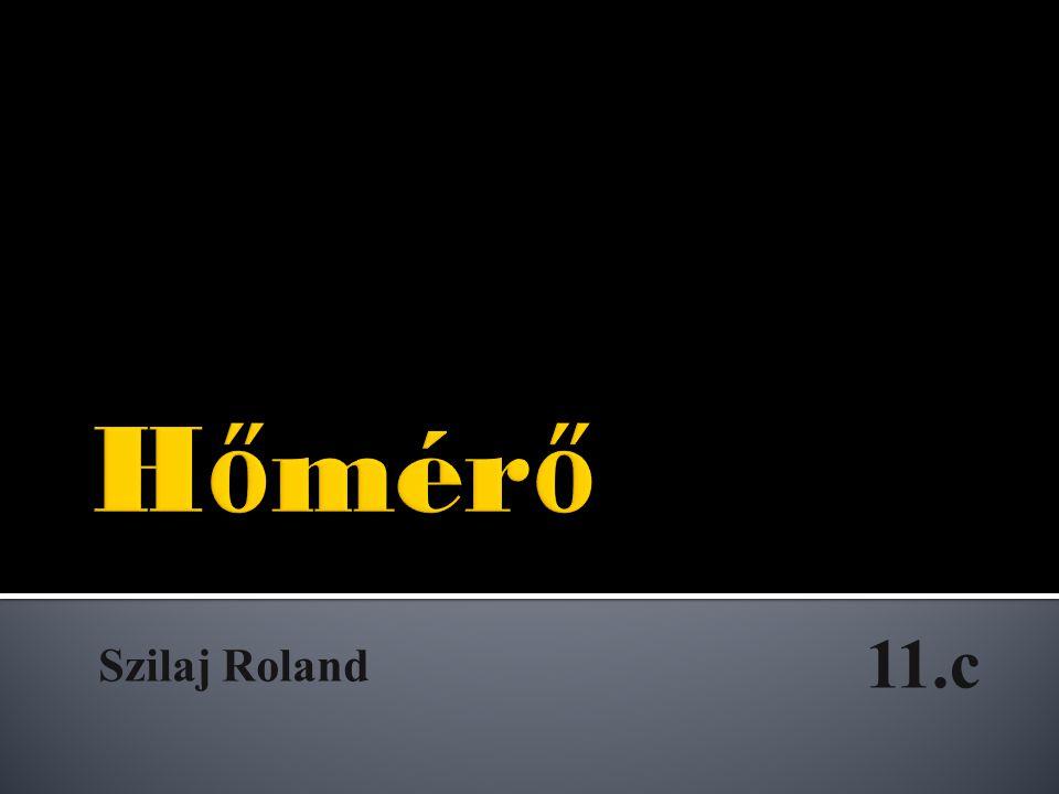 Hőmérő 11.c Szilaj Roland