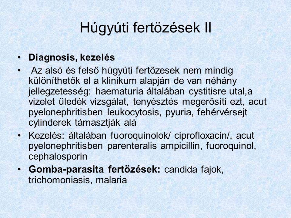 Húgyúti fertözések II Diagnosis, kezelés.