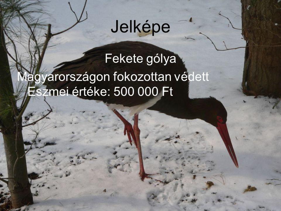 Jelképe Fekete gólya Magyarországon fokozottan védett Eszmei értéke: 500 000 Ft