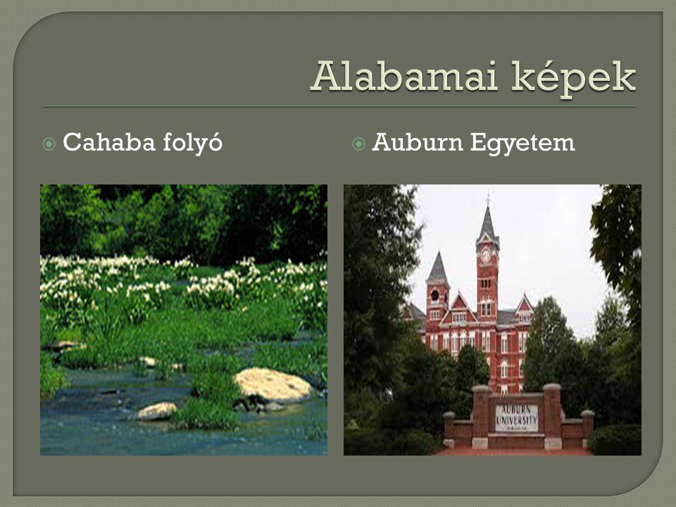 Alabamai képek Cahaba folyó Auburn Egyetem