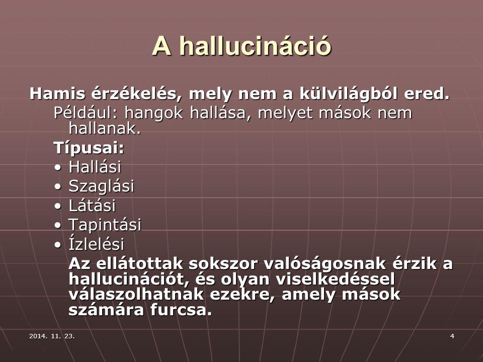 A hallucináció Hamis érzékelés, mely nem a külvilágból ered.