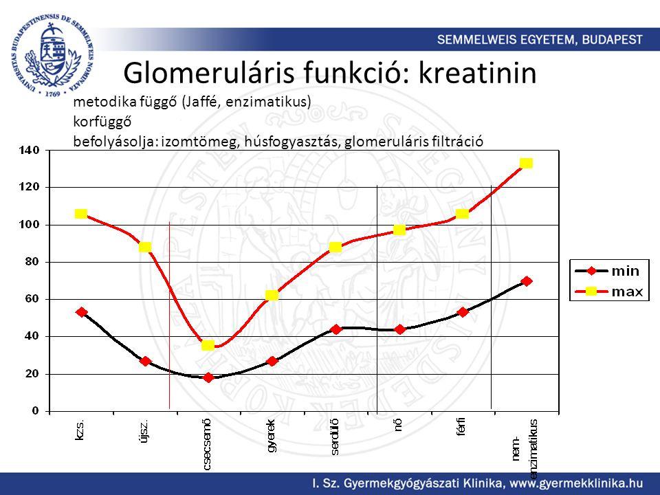 Glomeruláris funkció: kreatinin