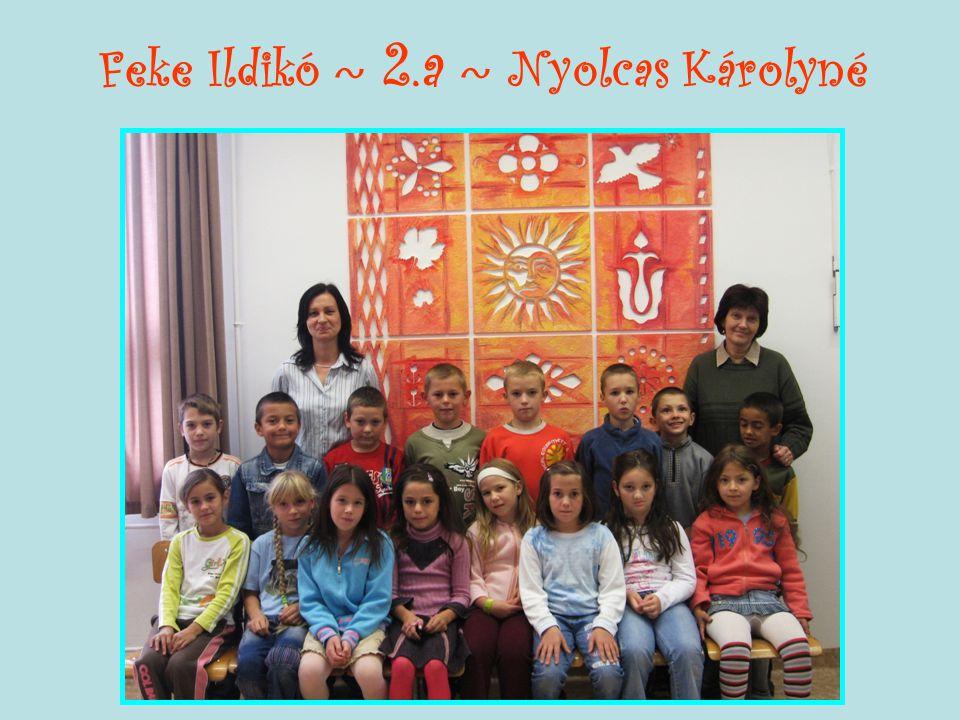 Feke Ildikó ~ 2.a ~ Nyolcas Károlyné
