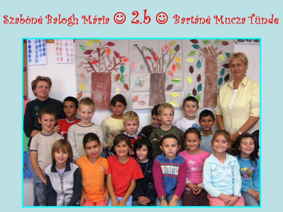 Szabóné Balogh Mária  2.b  Bartáné Mucza Tünde
