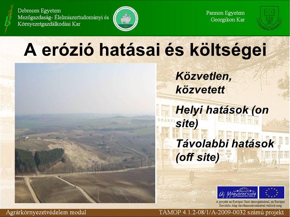 A erózió hatásai és költségei
