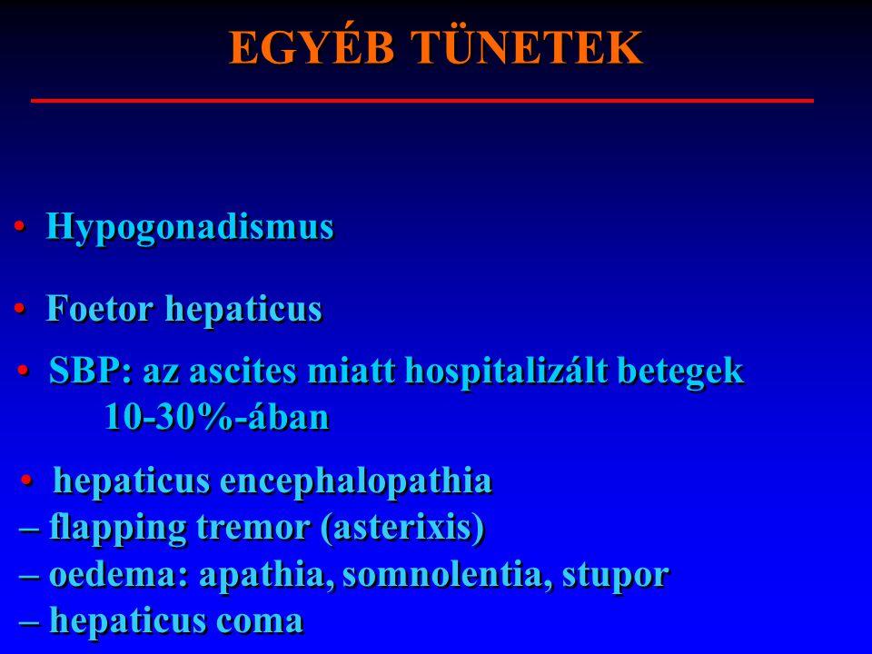 EGYÉB TÜNETEK Hypogonadismus Foetor hepaticus