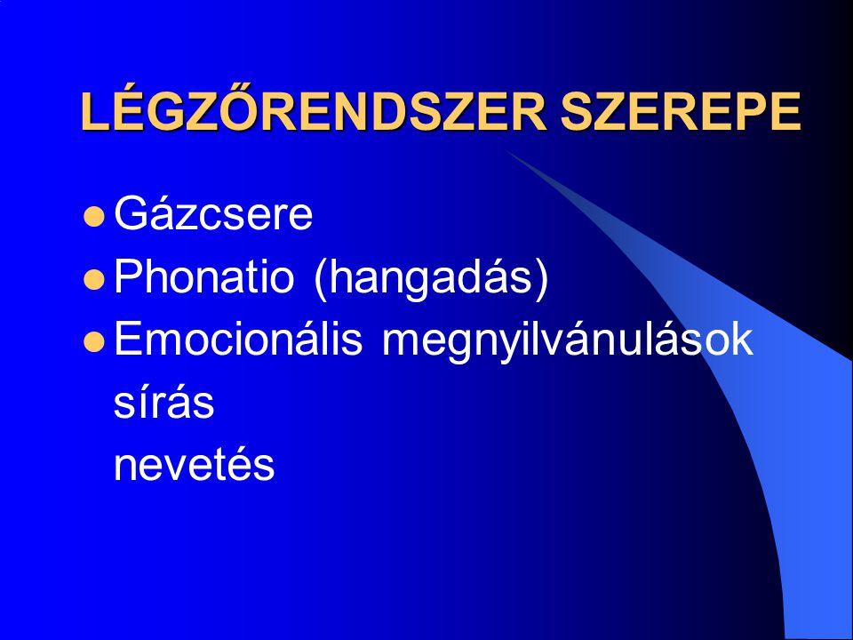 LÉGZŐRENDSZER SZEREPE