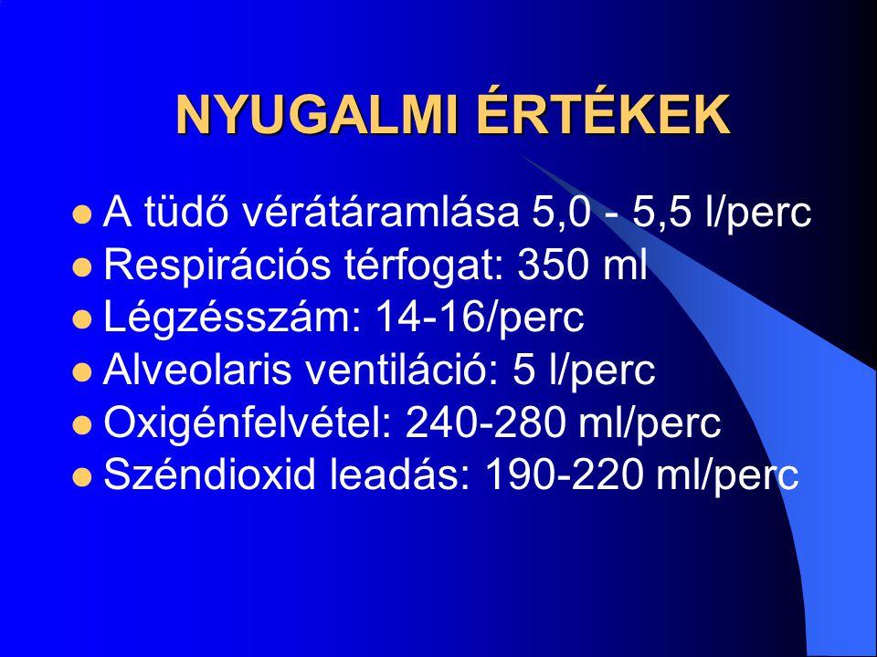 NYUGALMI ÉRTÉKEK A tüdő vérátáramlása 5,0 - 5,5 l/perc