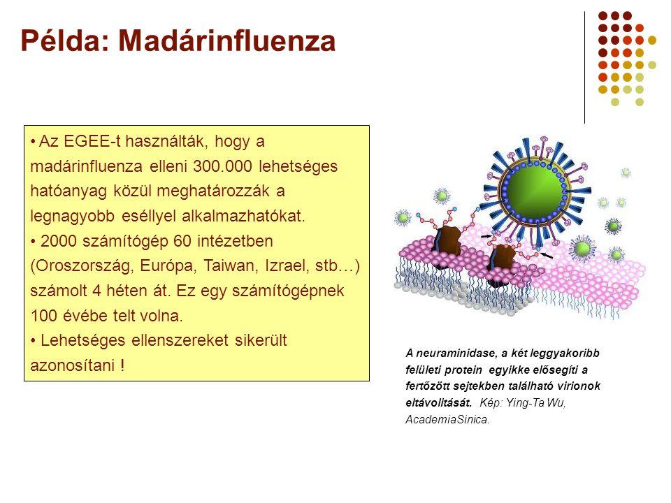 Példa: Madárinfluenza