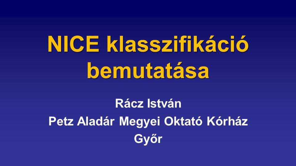 NICE klasszifikáció bemutatása