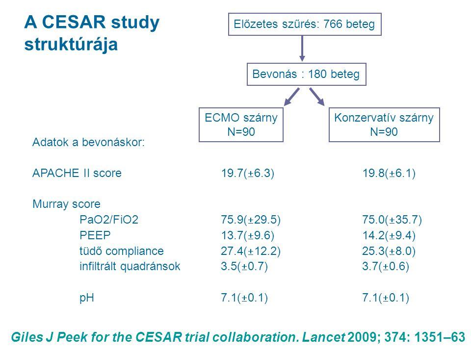 A CESAR study struktúrája