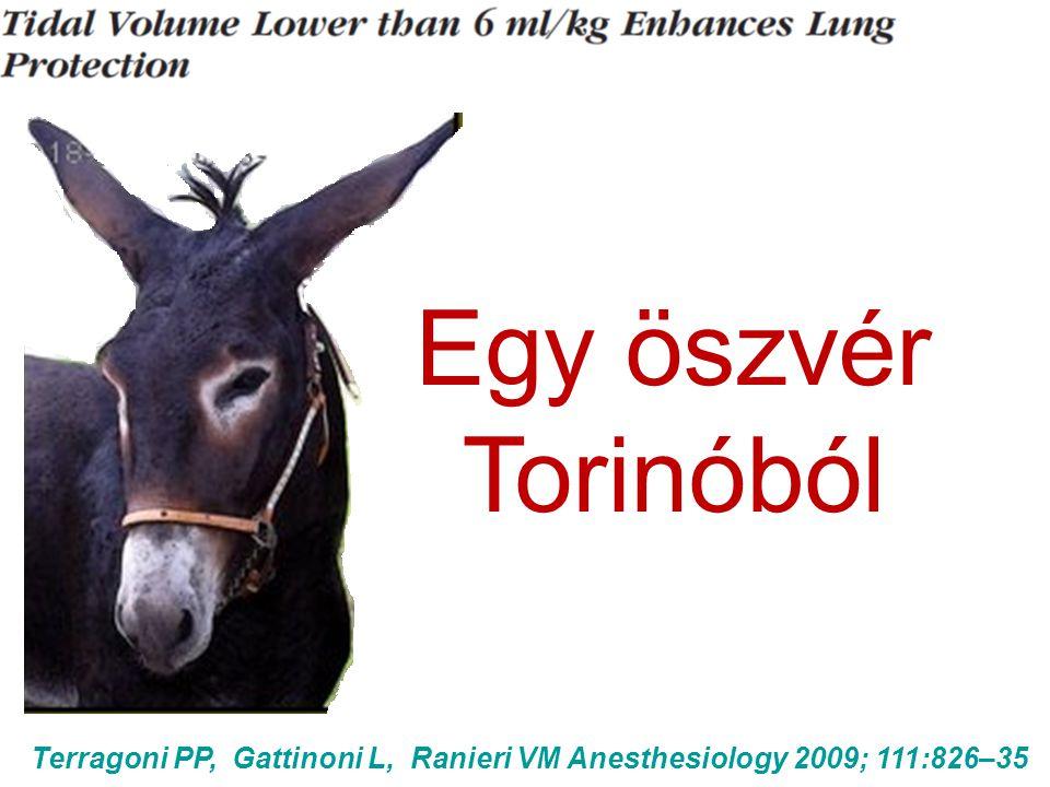 Egy öszvér Torinóból Terragoni PP, Gattinoni L, Ranieri VM Anesthesiology 2009; 111:826–35
