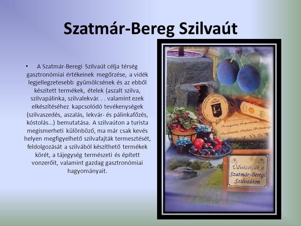 Szatmár-Bereg Szilvaút