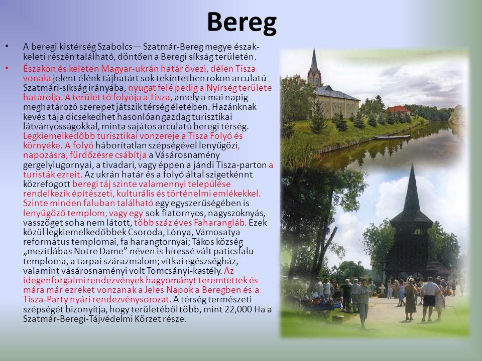 Bereg A beregi kistérség Szabolcs— Szatmár-Bereg megye észak-keleti részén található, döntően a Beregi síkság területén.