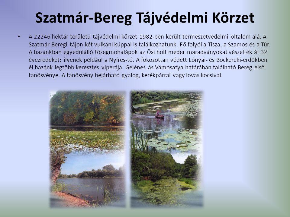 Szatmár-Bereg Tájvédelmi Körzet