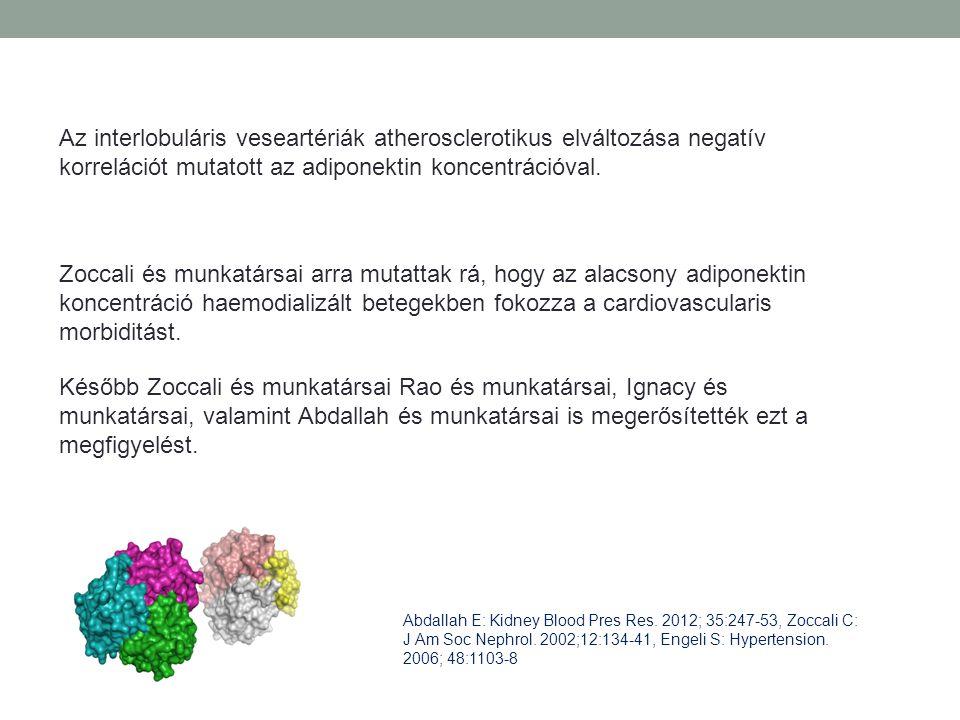 Az interlobuláris veseartériák atherosclerotikus elváltozása negatív korrelációt mutatott az adiponektin koncentrációval.