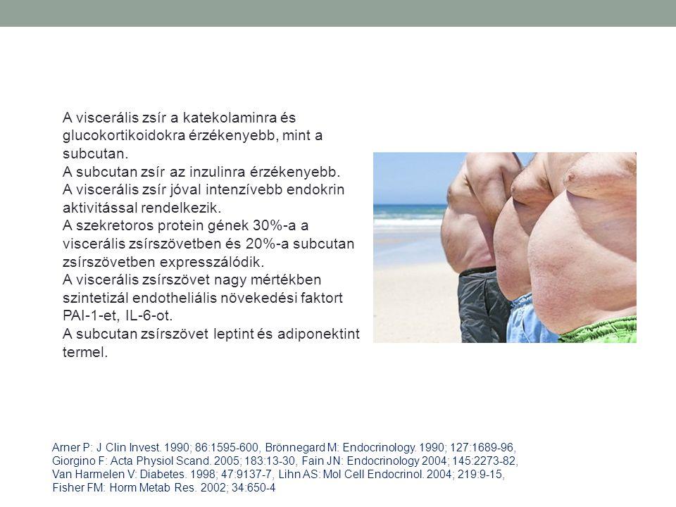 A subcutan zsír az inzulinra érzékenyebb.