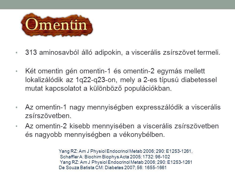 313 aminosavból álló adipokin, a viscerális zsírszövet termeli.