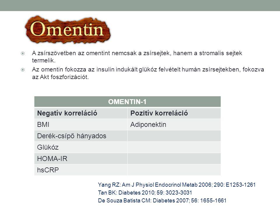 OMENTIN-1 Negatív korreláció Pozitív korreláció BMI Adiponektin