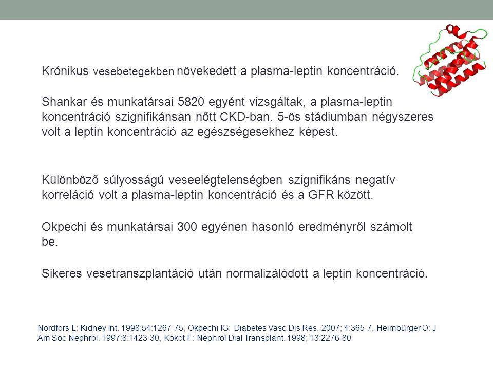 Krónikus vesebetegekben növekedett a plasma-leptin koncentráció.