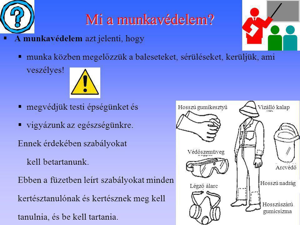 Mi a munkavédelem A munkavédelem azt jelenti, hogy