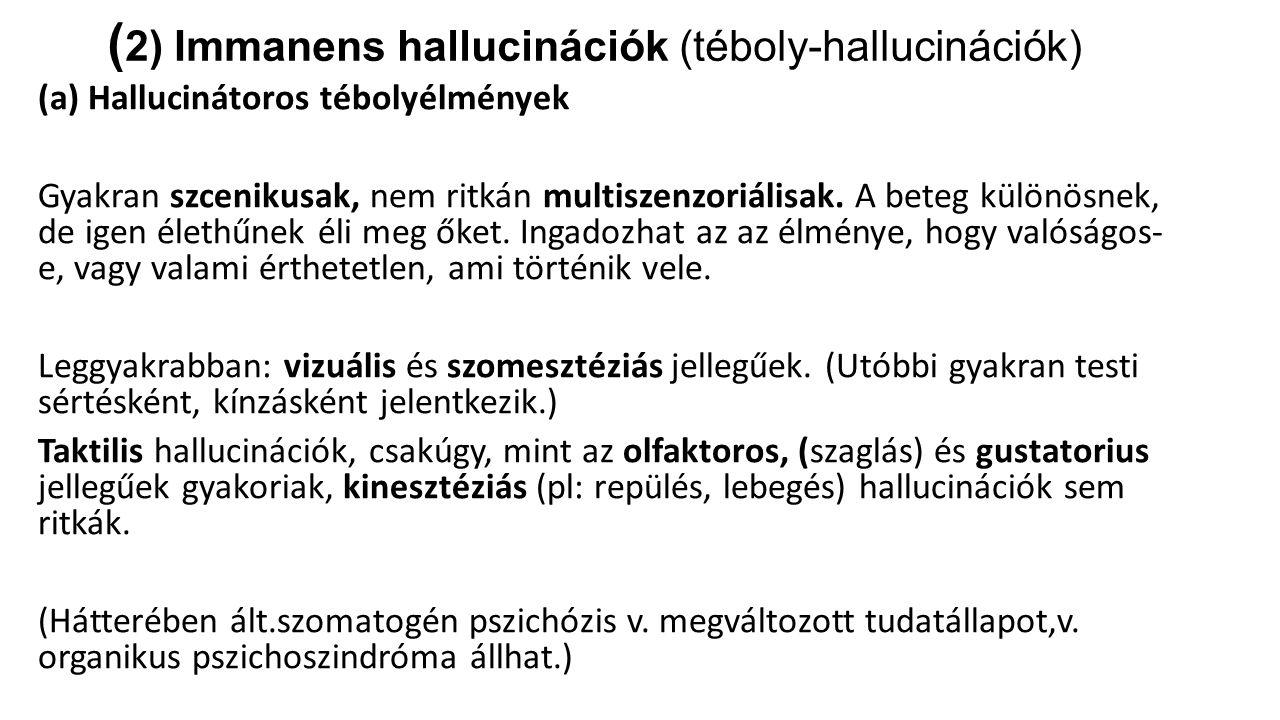 (2) Immanens hallucinációk (téboly-hallucinációk)