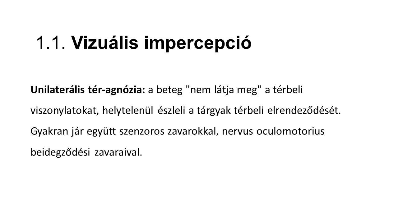 1.1. Vizuális impercepció