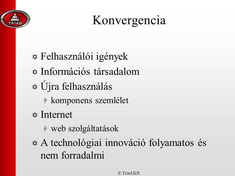 Konvergencia Felhasználói igények Információs társadalom