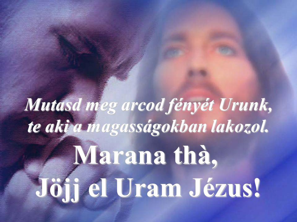 Mutasd meg arcod fényét Urunk, te aki a magasságokban lakozol.