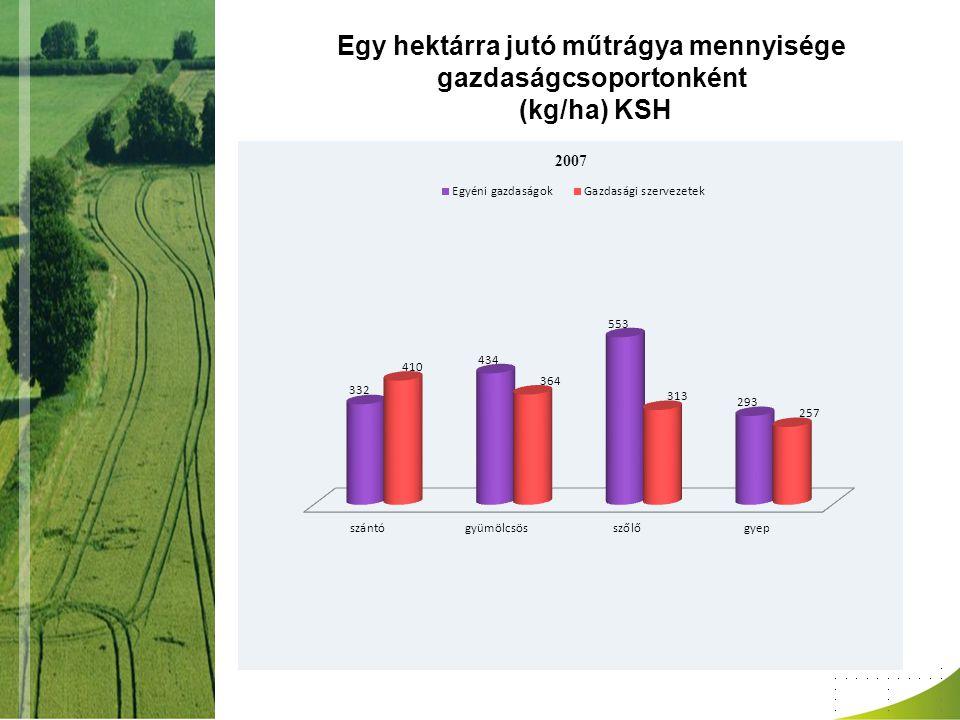 Egy hektárra jutó műtrágya mennyisége gazdaságcsoportonként