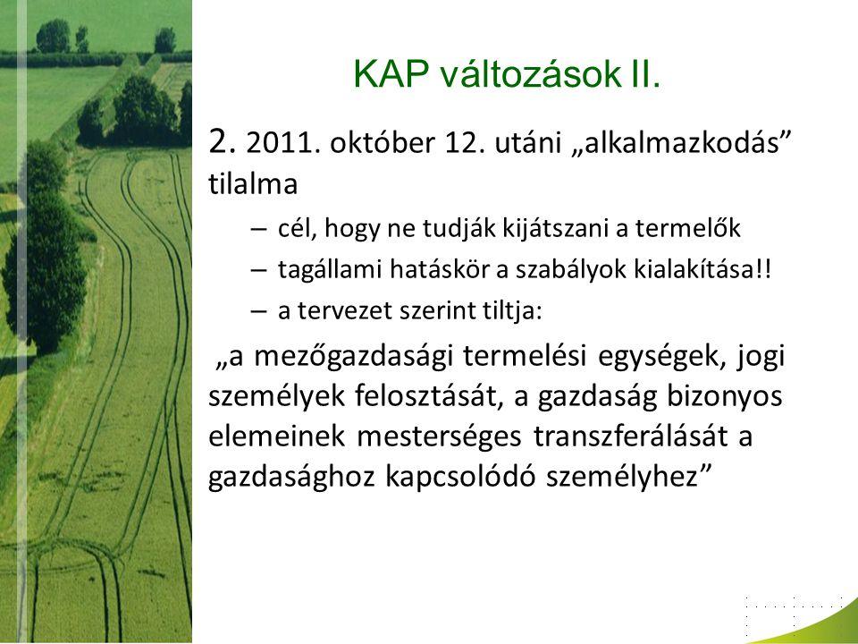 """2. 2011. október 12. utáni """"alkalmazkodás tilalma"""