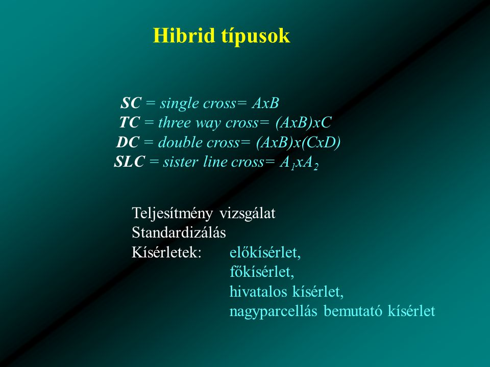 Hibrid típusok SC = single cross= AxB TC = three way cross= (AxB)xC