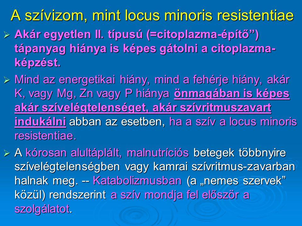 A szívizom, mint locus minoris resistentiae