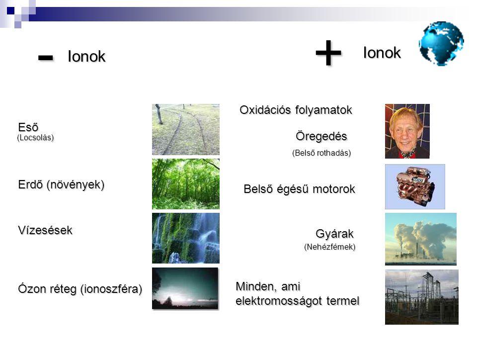 + - Ionok Oxidációs folyamatok Eső Öregedés Erdő (növények)