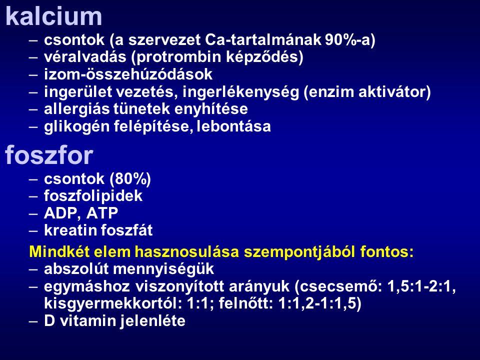 kalcium foszfor csontok (a szervezet Ca-tartalmának 90%-a)