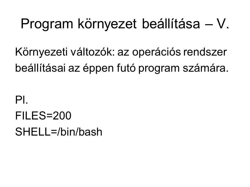 Program környezet beállítása – V.