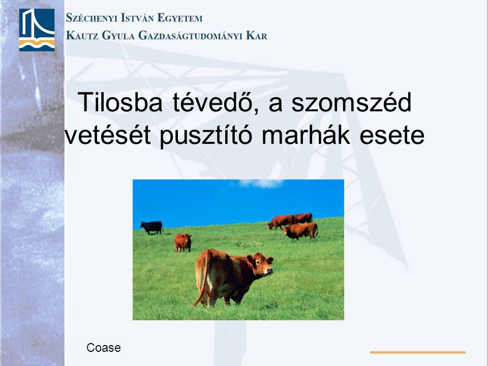 Tilosba tévedő, a szomszéd vetését pusztító marhák esete