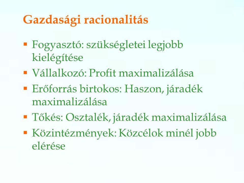 Gazdasági racionalitás