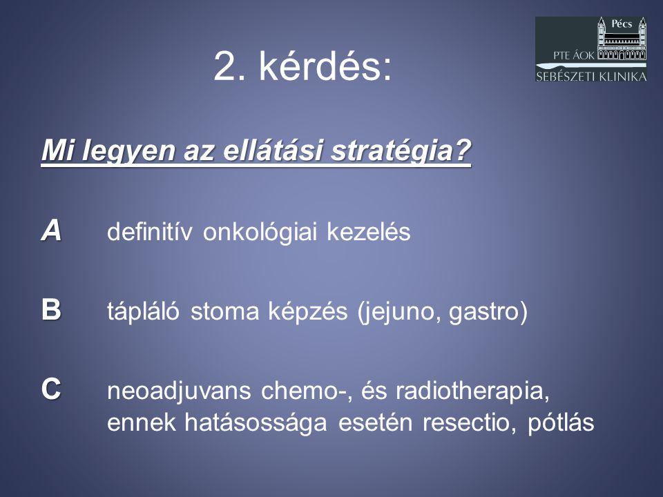 2. kérdés: Mi legyen az ellátási stratégia