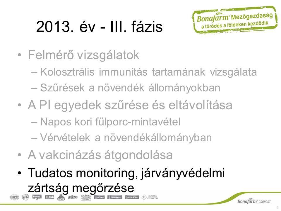 2013. év - III. fázis Felmérő vizsgálatok